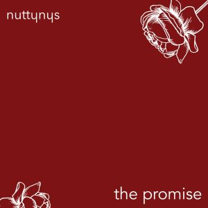 Nutty Nys The Promise