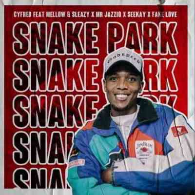 Photo of Cyfred, Mellow, Sleazy & SeeKay – Snake Park Ft. Mr JazziQ & Fake Love