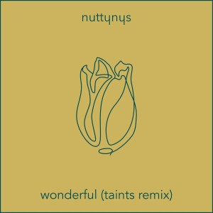 Nutty Nys – Wonderful (Taints Remix) Mp3 download
