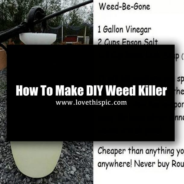How To Make Diy Weed Killer