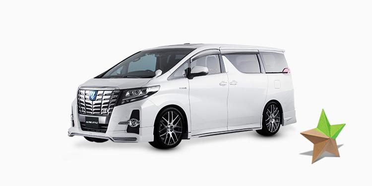 ALPINE カスタマイズカー 特典付き限定トヨタ中古車