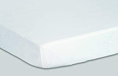 Priva Hypoallergenic Waterproof Vinyl Mattress Protector, Dust Mite, Bed Bug and Allergen Barrier, Machine Washable, Queen, White (PVMP/Q)