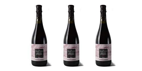 3 Bottiglie di Lambrusco Grasparossa di Castelvetro Doc'LaGrasparossa' | Cantina Zanasi
