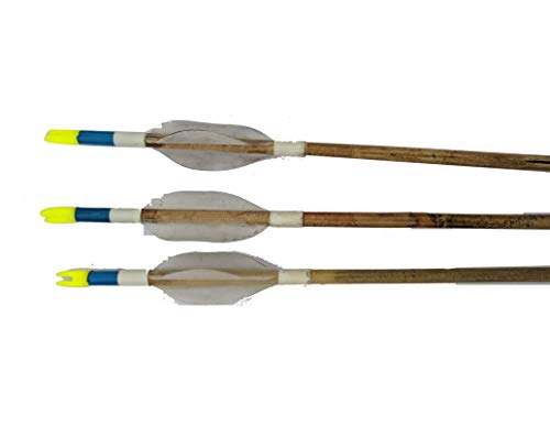 Avid Archery Cane 6 Arrows for Indian Bow, Wood