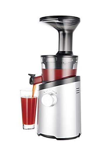 3. Hurom H101 Masticating Slow Juicer
