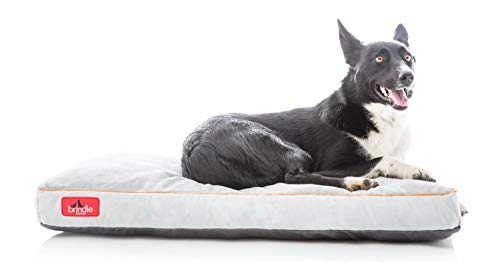 Brindle Shredded Memory Foam Dog Bed with...