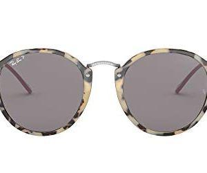 Ray-Ban Rb2447 Fleck Round Sunglasses 18