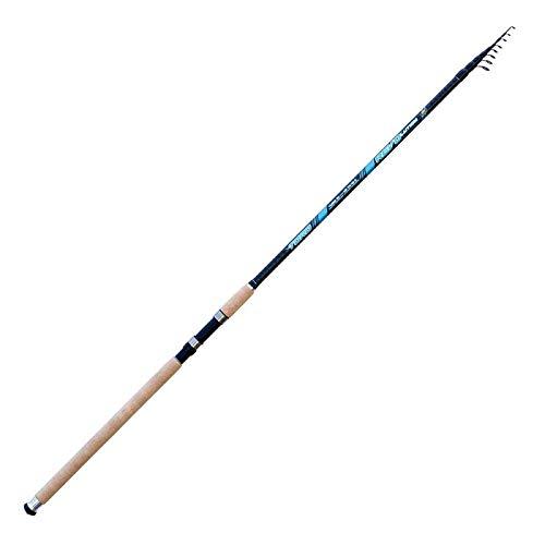 Lineaeffe Canna da Pesca Toro 4.20 m Up to 100 g Inglese da Lancio a Sezioni Separate Ideale Sia per Il Mare Lago Fiume