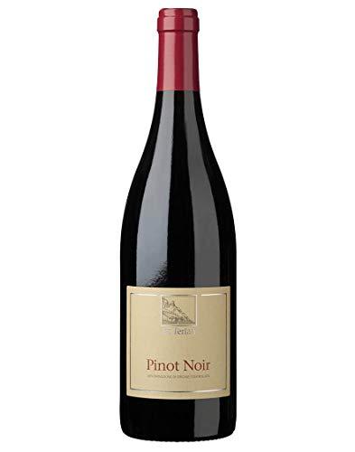Sdtirol - Alto Adige DOC Pinot Noir Terlano 2019 0,75 L