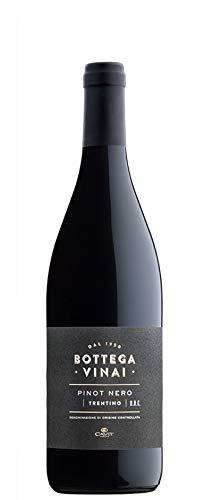 Trentino DOC Pinot Nero 2018 Cavit - Altemasi Rosso Trentino Alto Adige 13,0%
