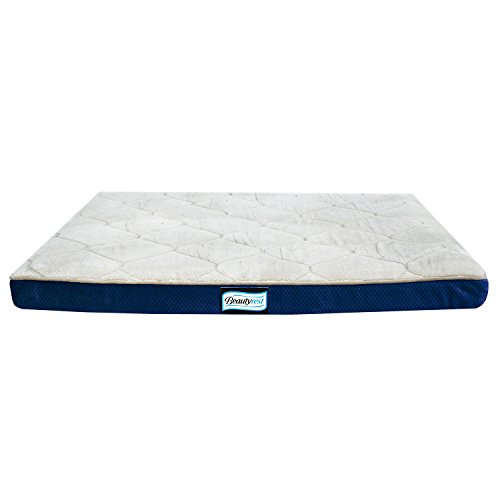 Simmons Beautyrest Thera Bed Orthopedic Memory...