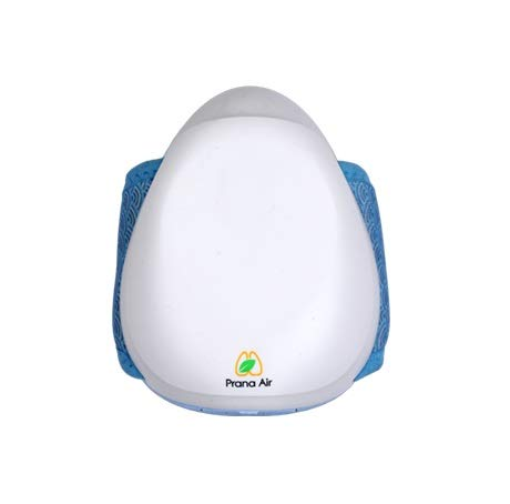 Prana Air PM2.5 Pollution Mask With 5 Layers HEPA Filter, 3 Fan Speeds & N95