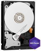 Western Digital WD Purple HDD Interno 3000 GB, SATA III, 6000 Mbit/s, 5400 rpm, 64 MB, 3.50 Pollici