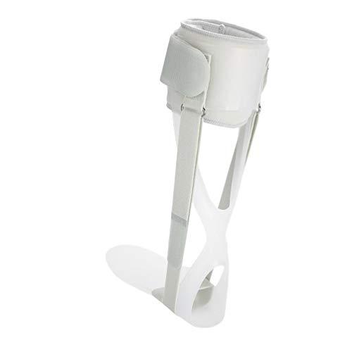 EXCEART Fuß-Schiene für Plantarfasziitis Fußgelenkschiene Sprunggelenk Schiene Achillessehnenentzündung Unterstützung für Damen und Herren Grau Links S