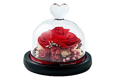Dakotan Forever Flowers,Handmade Forever Rose- Preserved Flower Rose with Heart Shape Glass -Romantic Gifts for Her, Valentine's Day Mother's Day Christmas Anniversary Birthday Thanksgiving(Red)