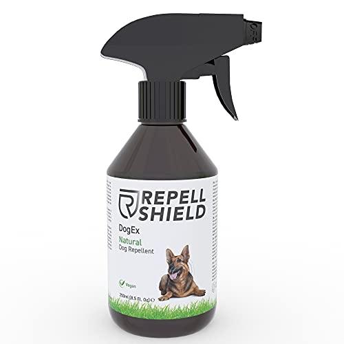 RepellShield Spray Repelente para Perros - Ahuyentador de Perros Natural - Spray Antimordeduras Perros para Exteriores e Interiores, Eficacia Duradera - Pipi Stop con Fragancia de Hierbabuena, 250ml