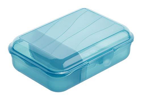 Rotho Fun Vesperdose 0.9l mit herausnehmbarer Trennwand, Kunststoff (PP) BPA-frei, blau, S/0,9l (17,7 x 12,9 x 6,0 cm)