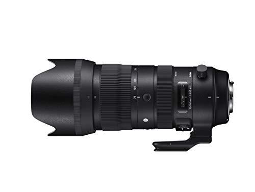 SIGMA 望遠ズームレンズ 70-200mm F2.8 DG OS HSM | Sports S018 NIKON-Fマウント用 フルサイズ対応