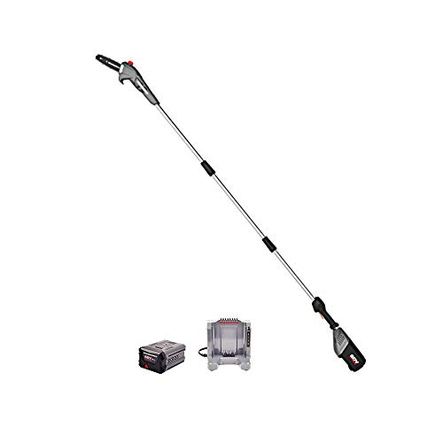 POWERWORKS PWPS60B410 8-Inch 60V Brushed Pole Saw, 2.0Ah Battery Included