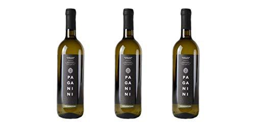 3 Bottiglie di Riviera Ligure di Ponente Vermentino DOC | Cantina Paganini | Annata 2017