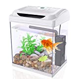 DADYPET Mini Aquarium Combattant, Aquarium Betta à LED avec Plantes et Galets, 3,8L