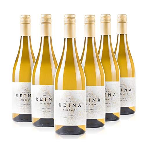 Vino Frizzante, vino blanco verdejo - Tempranillo- Con un Sa