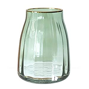 Multi-functional, Use as fresh flower vase, planter tabletop containers, home decoration and gift. Suitable for dinner table centerpiece, wedding settings, living room, garden, office tabletop. Size in 7(H) x 5.5(W) , Two colors available to complime...
