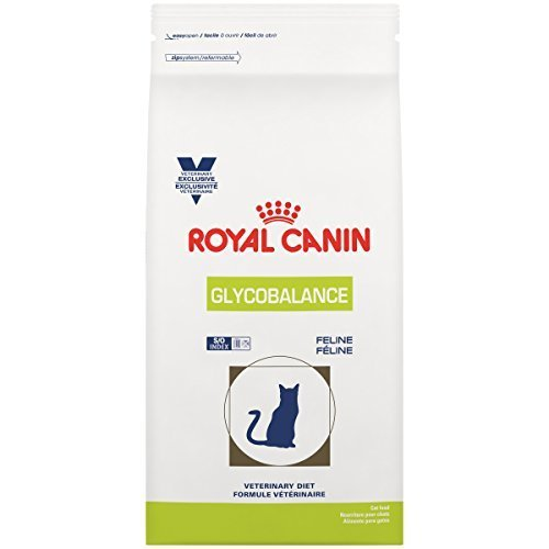 Best Royal Canin Cat food for your Cat or Kitten