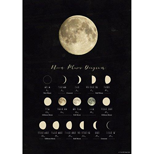 おしゃれ な 月の満ち欠けポスター A3 インテリア・知育・学習