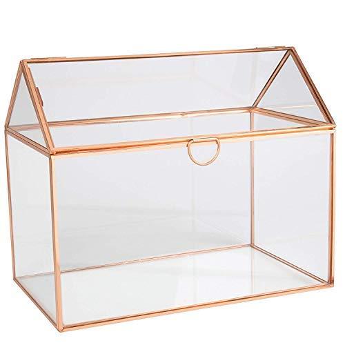Deco Glass Geometric DIY Terrarium, Succulent & Air Plant- Large House...