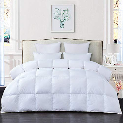 RE Bedding Luxurious Goose Down Comforter Duvet Insert King Size for All Season 100% Cotton Shell 750+ Fill Power 1000 Thread Count Hypoallergenic Down Proof with 8 Tabs (White, King)