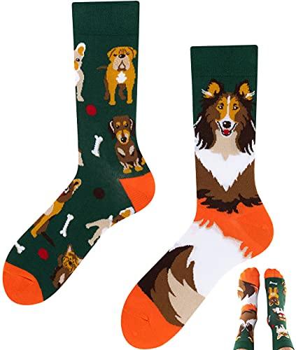 TODO Colours Calzini con Cane Uomo Donna - Dogs Life - divertenti, animali, colorati (39-42, Dogs Life)