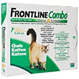 FRONTLINE COMBO CHAT /3