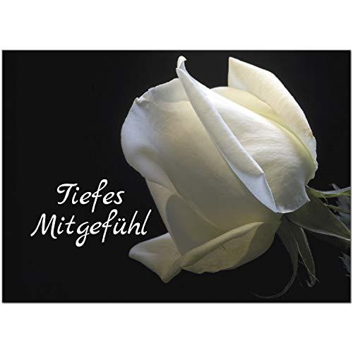 1 x Beileidskarte mit Umschlag/Motiv Weiße Rose Tiefes Mitgefühl/Beerdigung, Trauer, Sterbefall, Tod/Anteilnahme/Beileid