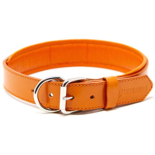 Logical Leather Padded Dog Collar - Best Full Grain Heavy Duty Genuine Leather Collar - Orange - Large