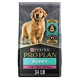 Purina Pro Plan High Protein Puppy Food DHA Lamb & Rice Formula - 34 lb. Bag
