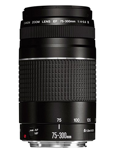 Canon EF 75-300mm f/4-5.6 III Objetivo para Canon (zoom óptico 4x,diámetro: 58mm), color negro
