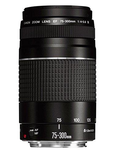 Canon EF 75-300 mm f/4-5.6 III Teleobiettivo Zoom per fotocamere EOS