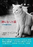 神になった猫―天空を駆け回る (コミュニティ・ブックス)