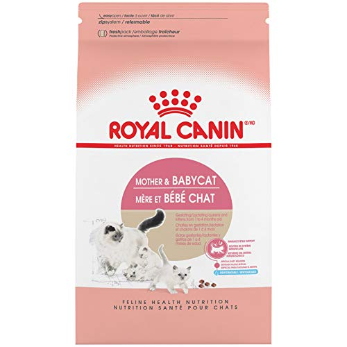 Royal Canin Feline Health Nutrition Mother & Babycat Dry Cat Food for Newborn Kittens and Pregnant or Nursing Cats, 3.5…