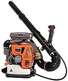 Schröder Leaf Blower - Schröder Backpack Blower - Gas Leaf Blower - SR-6400L - 3.7 HP Engine - 5 Year Warranty