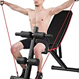 Hellofishly Dumbbell Bench sit-ups Fitness Equipment Home Multifunctional Auxiliary Device Supine Board Fitness Chair Bird Bench Press (Black)