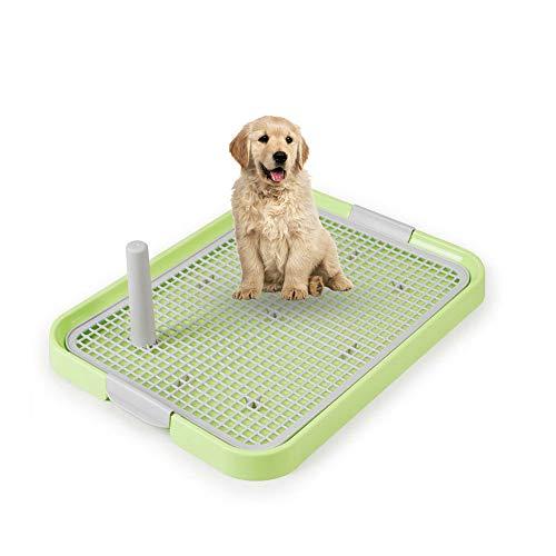 Umiwe Hundeklo Hundetoilette, Welpentoilette Trainingsunterlage stubenrein Training Töpfchen Matte Hundetoilette mit Masche und Sammlungs-Behälter für Haustiere Innentoiletten (Grün - 19X 14 Zoll)