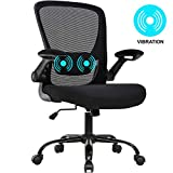 Office Chair Ergonomic Desk Chair Mesh Computer Chair Swivel Rolling Mid Back Task Chair with Lumbar Support Flip-up Arms Massage Adjustable Chair for Women Adults(Black)