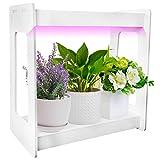 Indoor Herb Garden...image