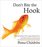 Don't Bite the Hook: Finding Freedom from Anger, Resentment, and Other Destructive Emotions
