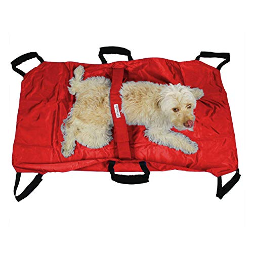 Walkin' Transport Stretcher for Dogs   Emergency Animal Carrier with Safety Strap   250 Pound Weight Limit   Pet Stretcher Size: 47 L X 29 W inches