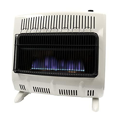 Mr. Heater Corporation F299730 Heater, One Size,...