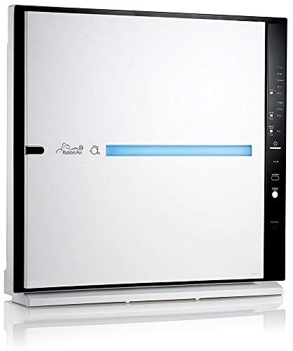RabbitAir MinusA2 Ultra Quiet HEPA Air Purifier - Stylish, Efficient and Energy Star (SPA-700A, White, Odor Remover)
