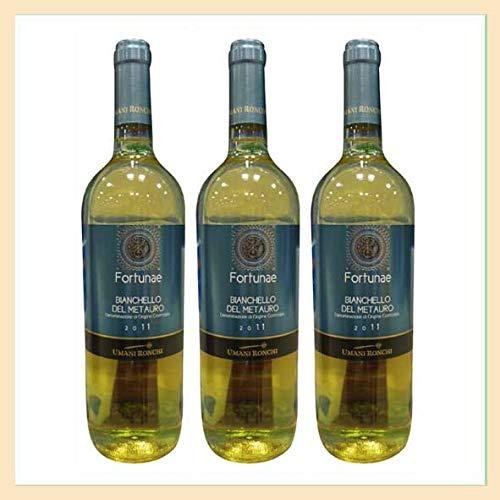3x Bianchello del Metauro doc 0,75 lt, cantina Umani Ronchi, prodotto tipico marchigiano, Italia